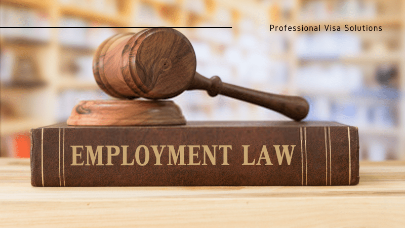 Changes to the Employment Laws that are Going to Affect the NZ Employees